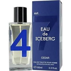 Iceberg Eau de Iceberg Cedar edt 100ml